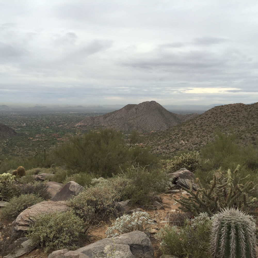 Nature preserve in Scottsdale