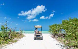 Golf Cart on a Beach